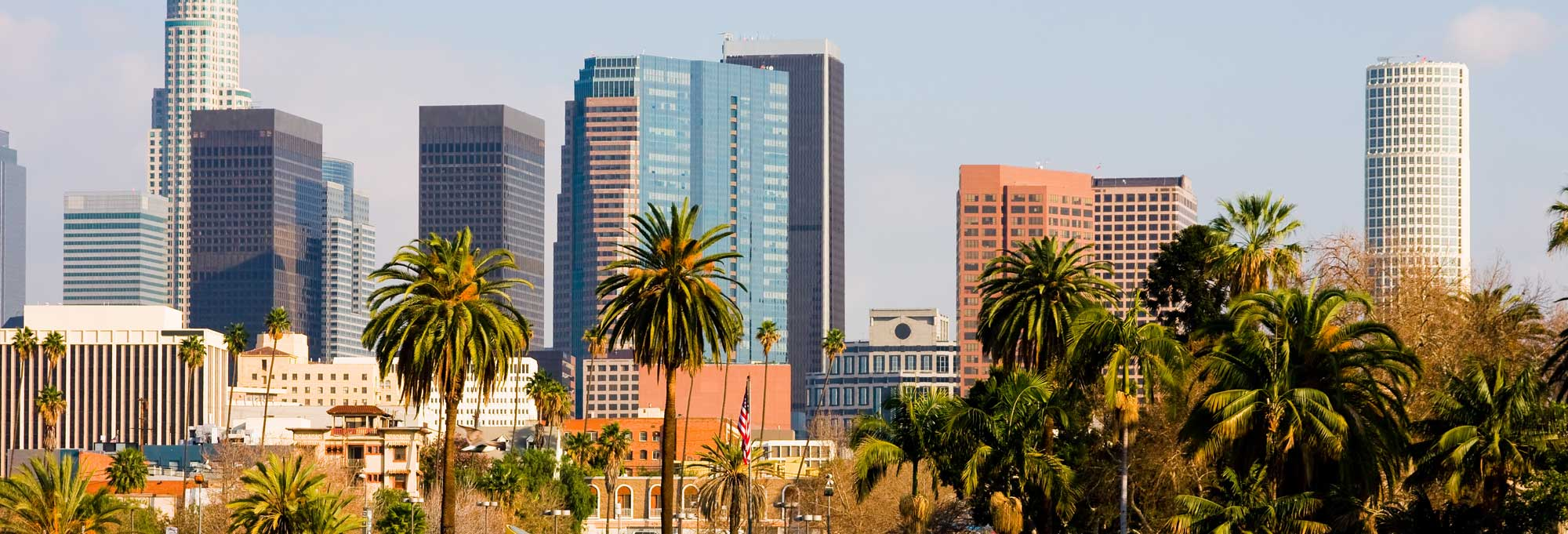 Los Angeles Banner Image 1